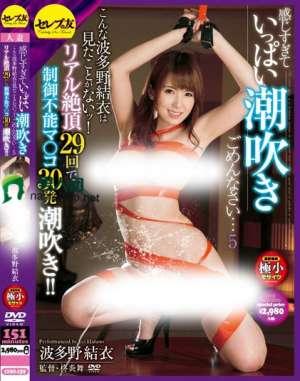 波多野结衣主演番号_CESD-159