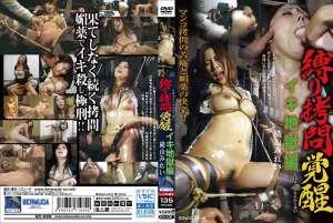 日本另类SM虐待束缚捆绑折磨系列16部合集